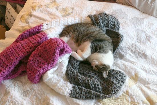 Easy Color Block Crochet Blanket Tutorial - Melanie Ham